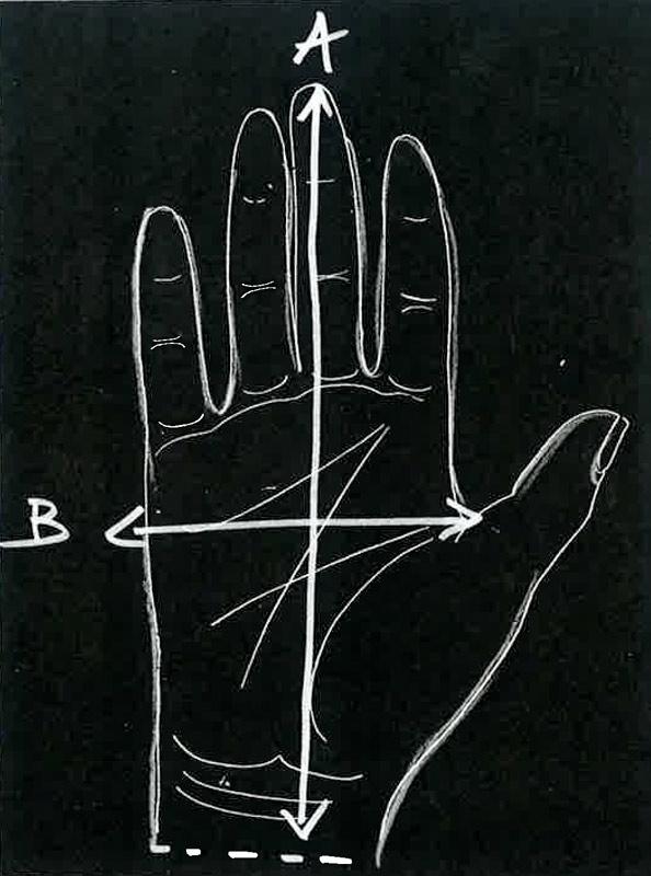 Guida alle taglie guanti